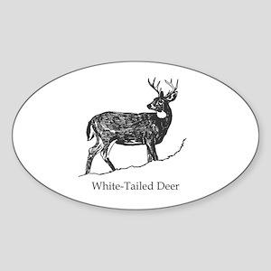 White Tailed Deer Trophy Buck Sticker