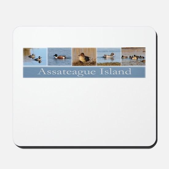 Assateague Island Waterfowl Mousepad