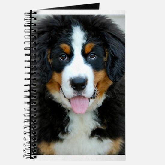 Bernese Mountain Dog Puppy Journal