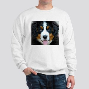 Bernese Mountain Dog Puppy Sweatshirt