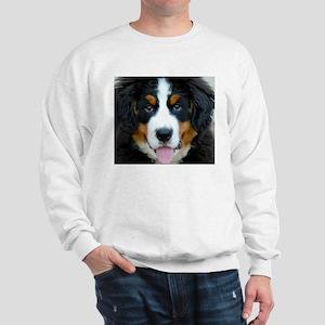 Bernese Mountain Dog Puppy Sweatshirt
