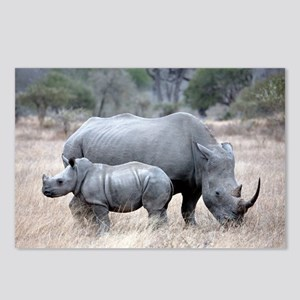Mother and Baby Rhino Postcards (Package of 8)