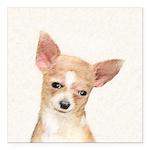 Chihuahua Square Car Magnet 3