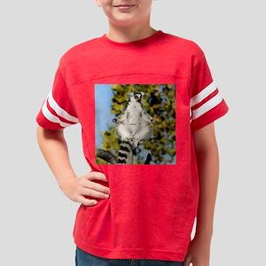 Sunning Ringtail (15) Youth Football Shirt