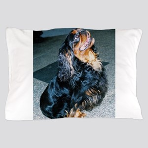 english toy spaniel sitting Pillow Case