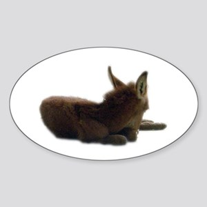 baby donkey Oval Sticker