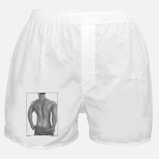 Arik Tease Boxer Shorts