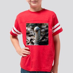 Mushroom King Youth Football Shirt