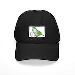 Green Quaker Black Cap