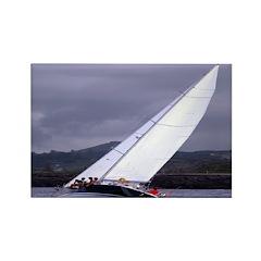 Sailing In Regatta Rectangle Magnet