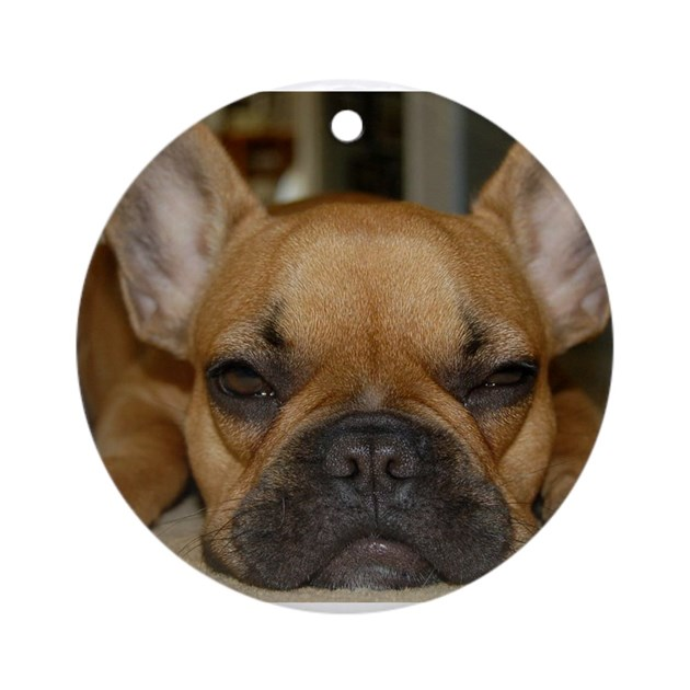french bulldog height french bulldog calendar ornament round by louiejoey 4661