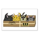 4 Cats in a box Sticker (Rectangle)
