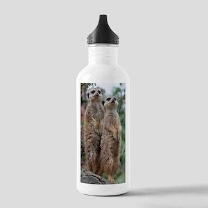 Meerkat-Dreamteam Stainless Water Bottle 1.0L