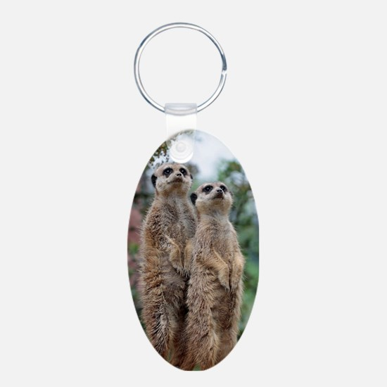 Meerkat-Dreamteam Keychains