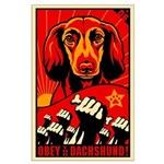 Long Haired Dachshund! Large Poster