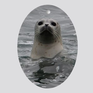 Harbor Seal Ornament (Oval)