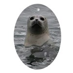 Harbor Seal Ornament (Oval)