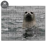 Harbor Seal Puzzle