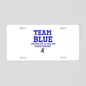 Team Blue Aluminum License Plate