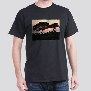 Trees at Sunset T-Shirt