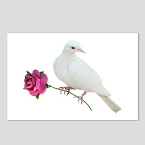 Dove Rose Postcards (Package of 8)
