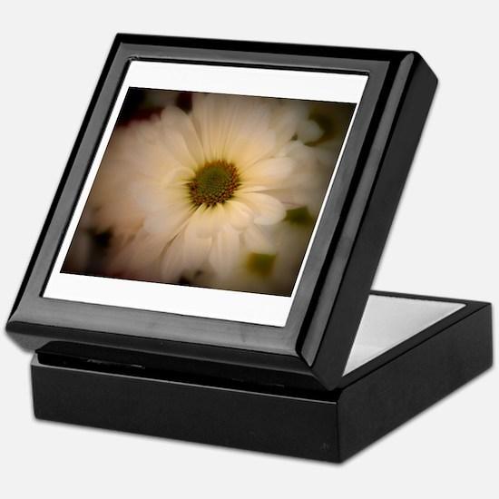 Dreamy Daisy Keepsake Box