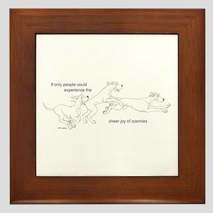 3 Zoomers Joy Framed Tile