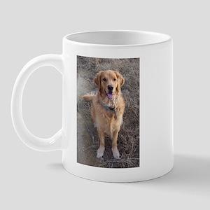 Sit Up! Golden Retriever Mug