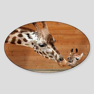 Kissing giraffes Sticker (Oval)