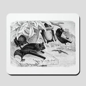 Daubenton's Bat Mousepad