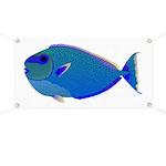 Bignose Unicornfish Banner