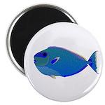 Bignose Unicornfish Magnets