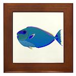 Bignose Unicornfish Framed Tile