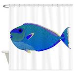 Bignose Unicornfish Shower Curtain