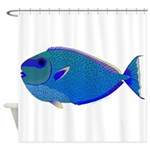 Bignose Unicornfish Shower Curtain