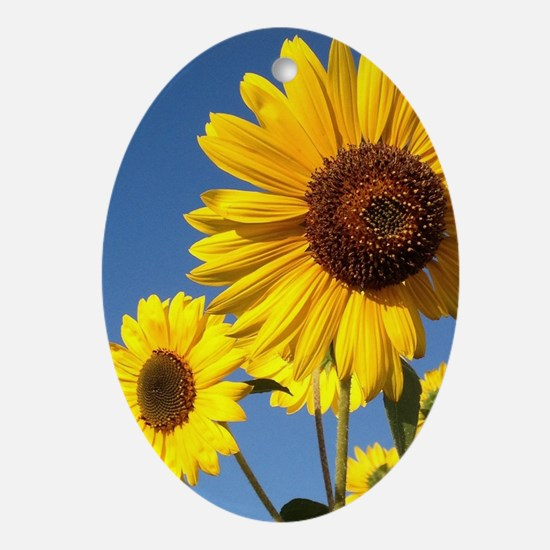 Double Sunflower Oval Ornament