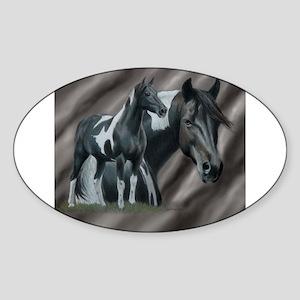 Pinto Horse Sticker