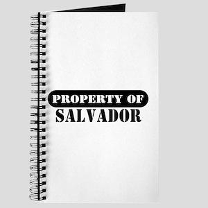 Property of Salvador Journal