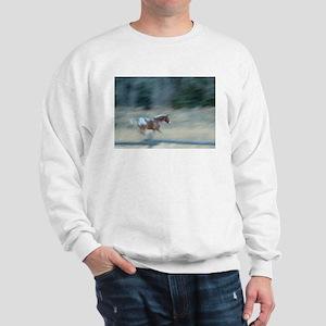 Painted Pony Sweatshirt