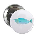 Whitemargin Unicornfish 2.25