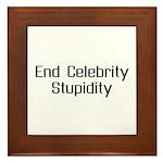 End Celebrity Stupidity Framed Tile