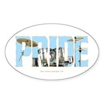 Drums Pride Oval Sticker