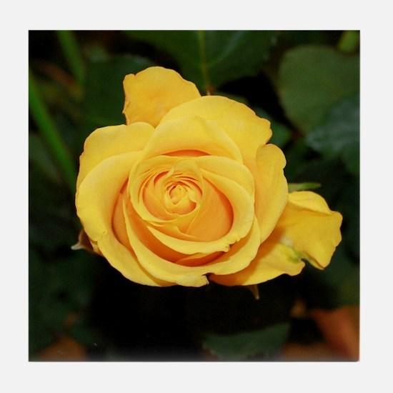 Rose yellow 001 Tile Coaster