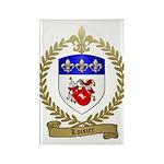LOISIER Family Crest Rectangle Magnet (100 pack)