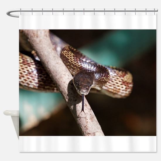 ANOTHER SAMMY THE SNAKE - Shower Curtain