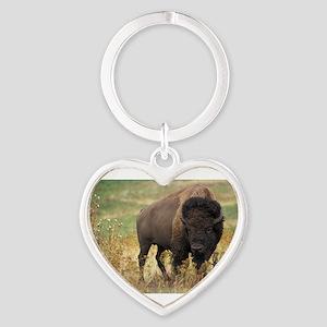 American buffalo Keychains