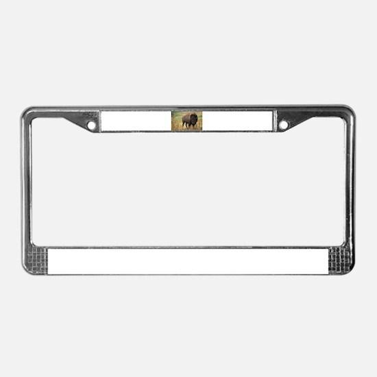 American buffalo License Plate Frame