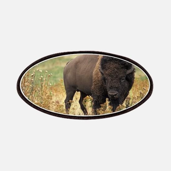 American buffalo Patches