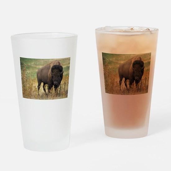 American buffalo Drinking Glass