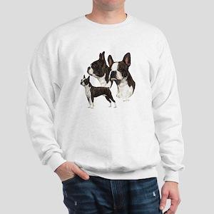 c78795f47d5 Boston Terrier Sweatshirts   Hoodies - CafePress
